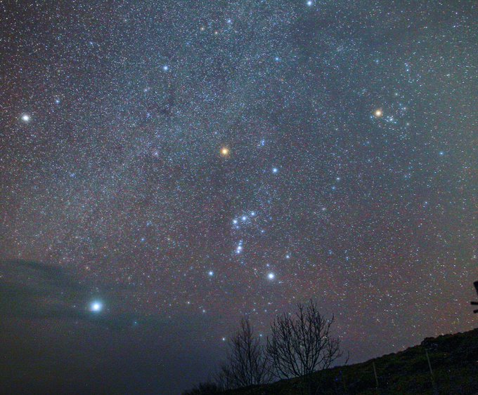 Orion in the winter sky